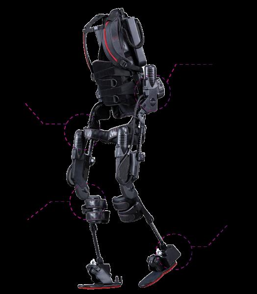 exoesqueleto-rebiotex